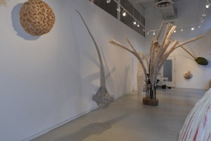 315 gallery opening, Jan 2015